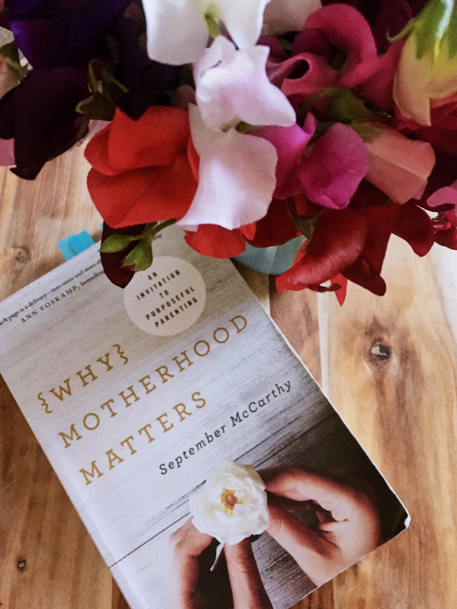 whymotherhood-1
